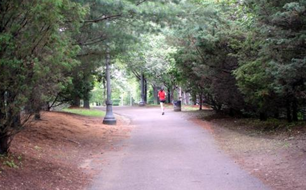 Somerville Community Park